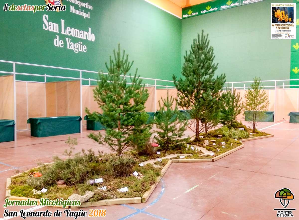 Jornadas Micológicas San Leonardo de Yagüe 2018 polideportivo
