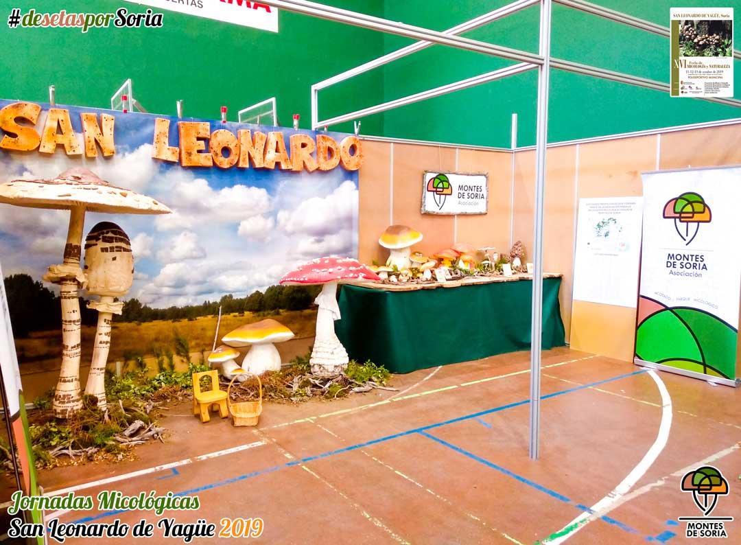 Jornadas Micológicas San Leonardo de Yagüe 2019 stand