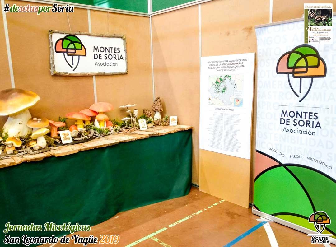 Jornadas Micológicas San Leonardo de Yagüe 2019 reproducciones