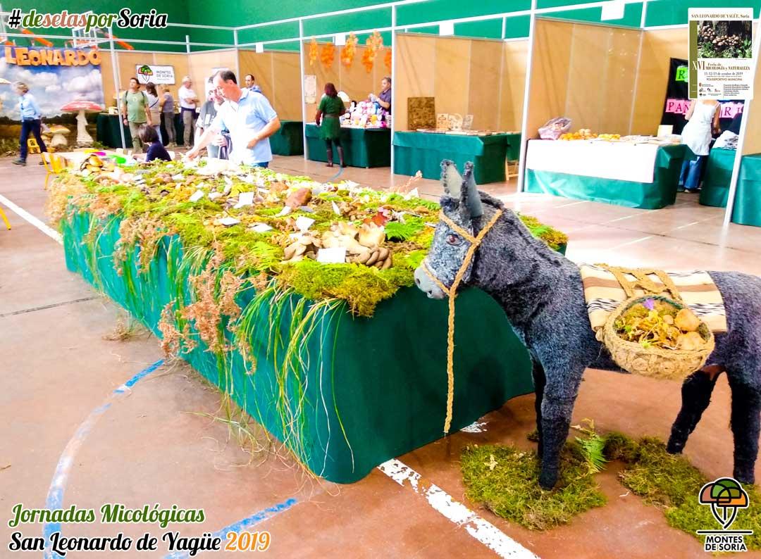 Jornadas Micológicas San Leonardo de Yagüe 2019 mesa de setas