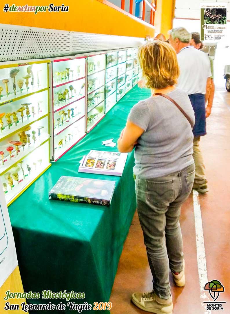 Jornadas Micológicas San Leonardo de Yagüe 2019 exposición