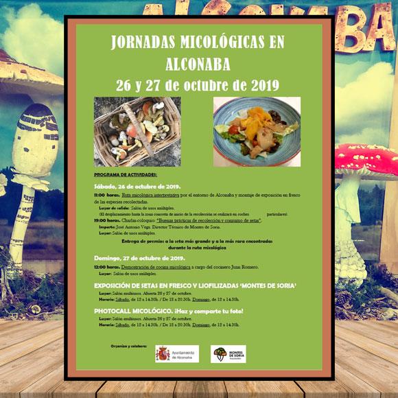 Jornadas micológicas Alconaba 2019 Mosaico