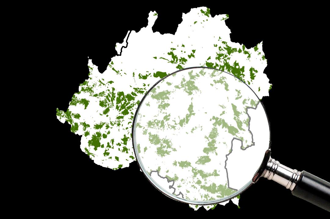 Encinares y Quejigares Mapa