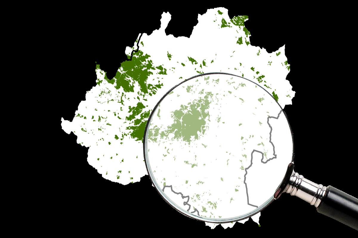 Pinares de Llanura mapas