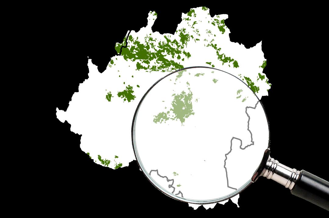 Rebollares mapa