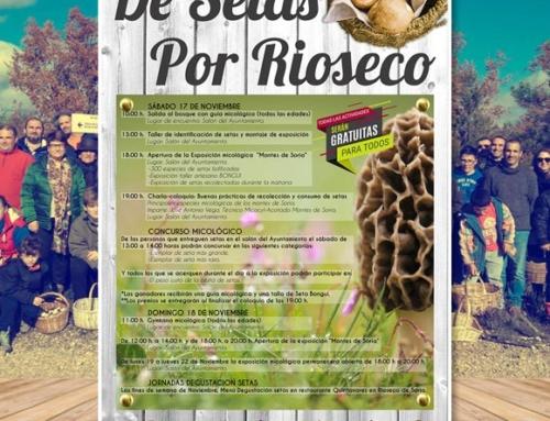 Jornadas Micológicas Rioseco de Soria 2018