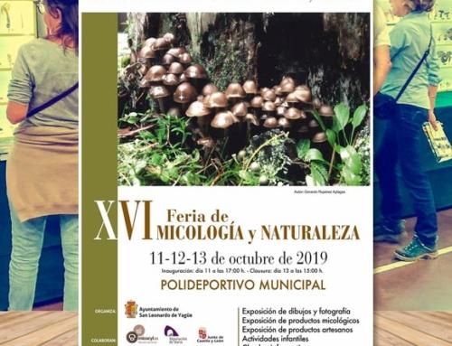 Jornadas Micológicas San Leonardo de Yagüe 2019