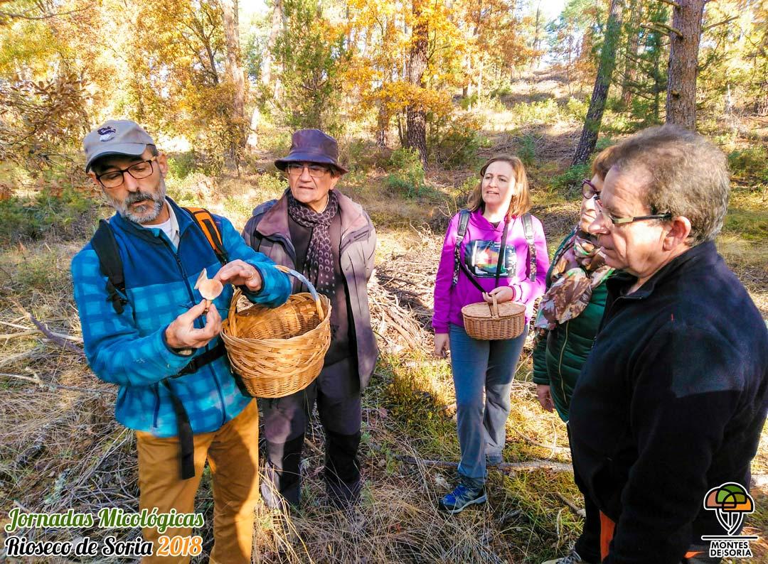 Jornadas Micológicas Rioseco de Soria 2018 excursión