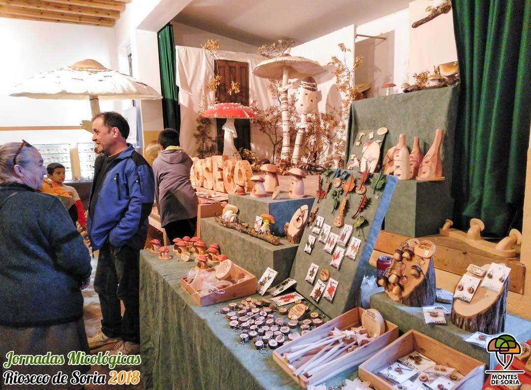 Jornadas Micológicas Rioseco de Soria 2018 Bongui