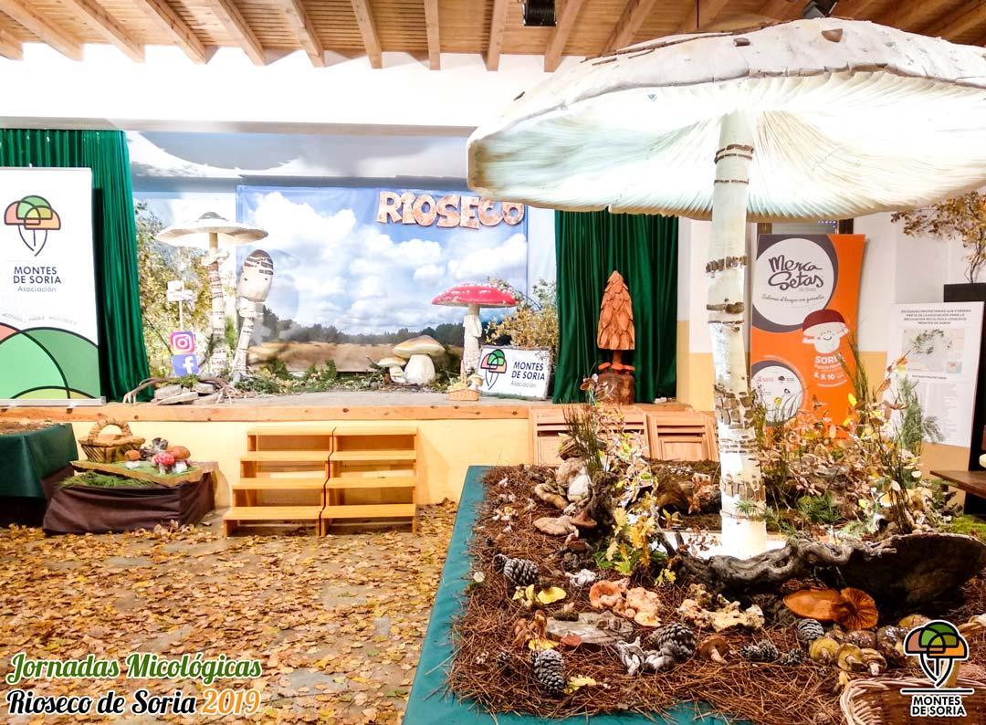 Jornadas Micológicas Rioseco de Soria 2019 1