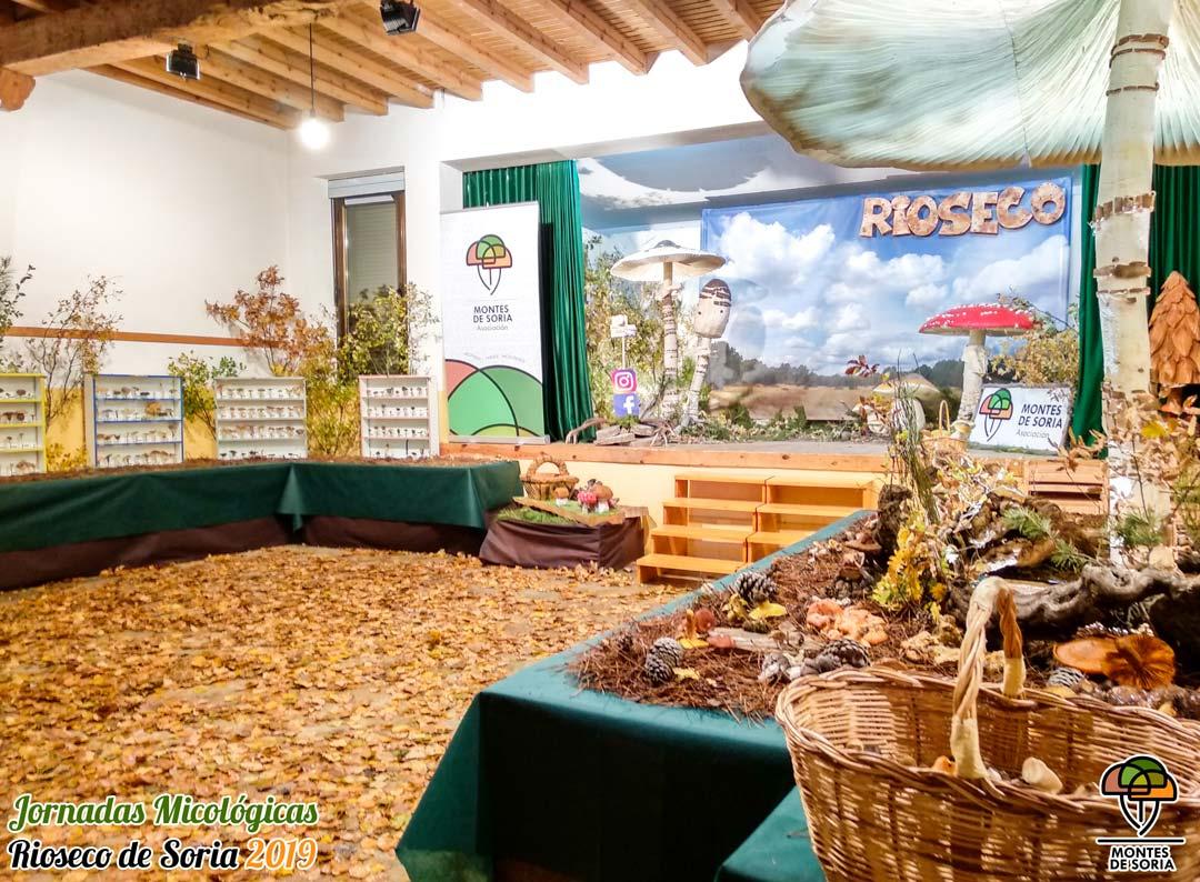 Jornadas Micológicas Rioseco de Soria 2019 2