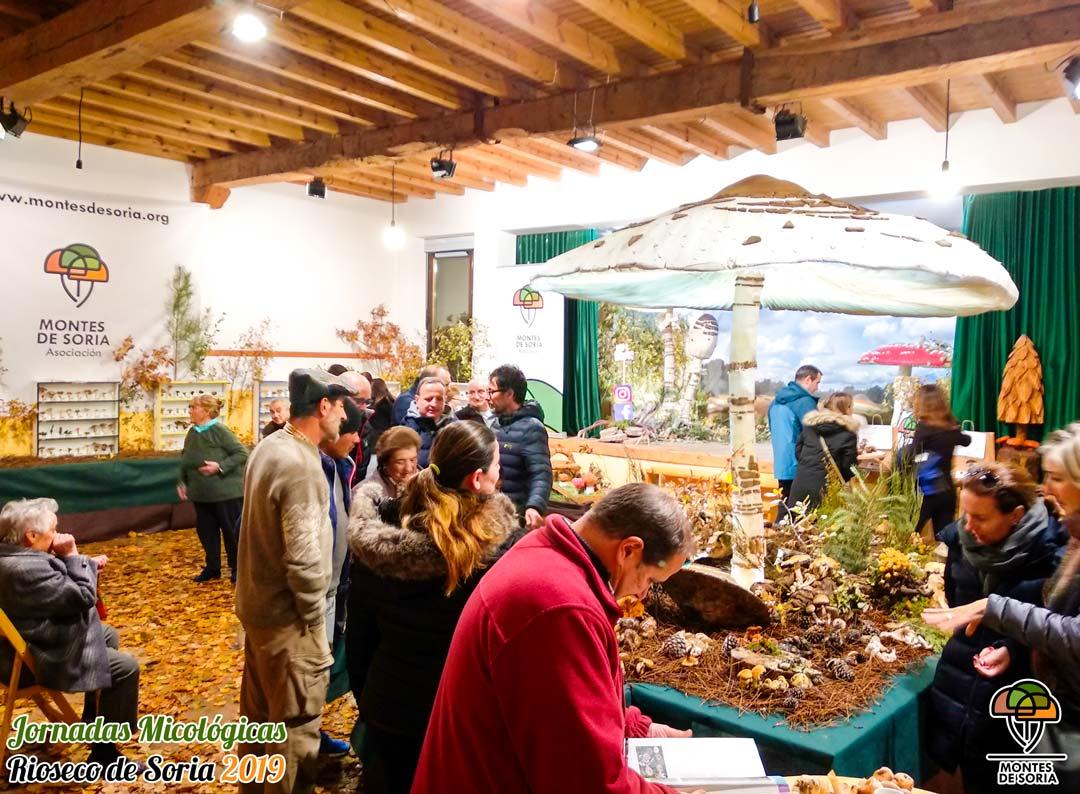 Jornadas Micológicas Rioseco de Soria 2019 3