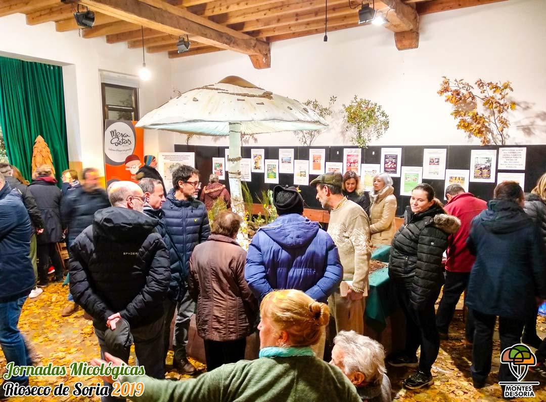 Jornadas Micológicas Rioseco de Soria 2019 exposición