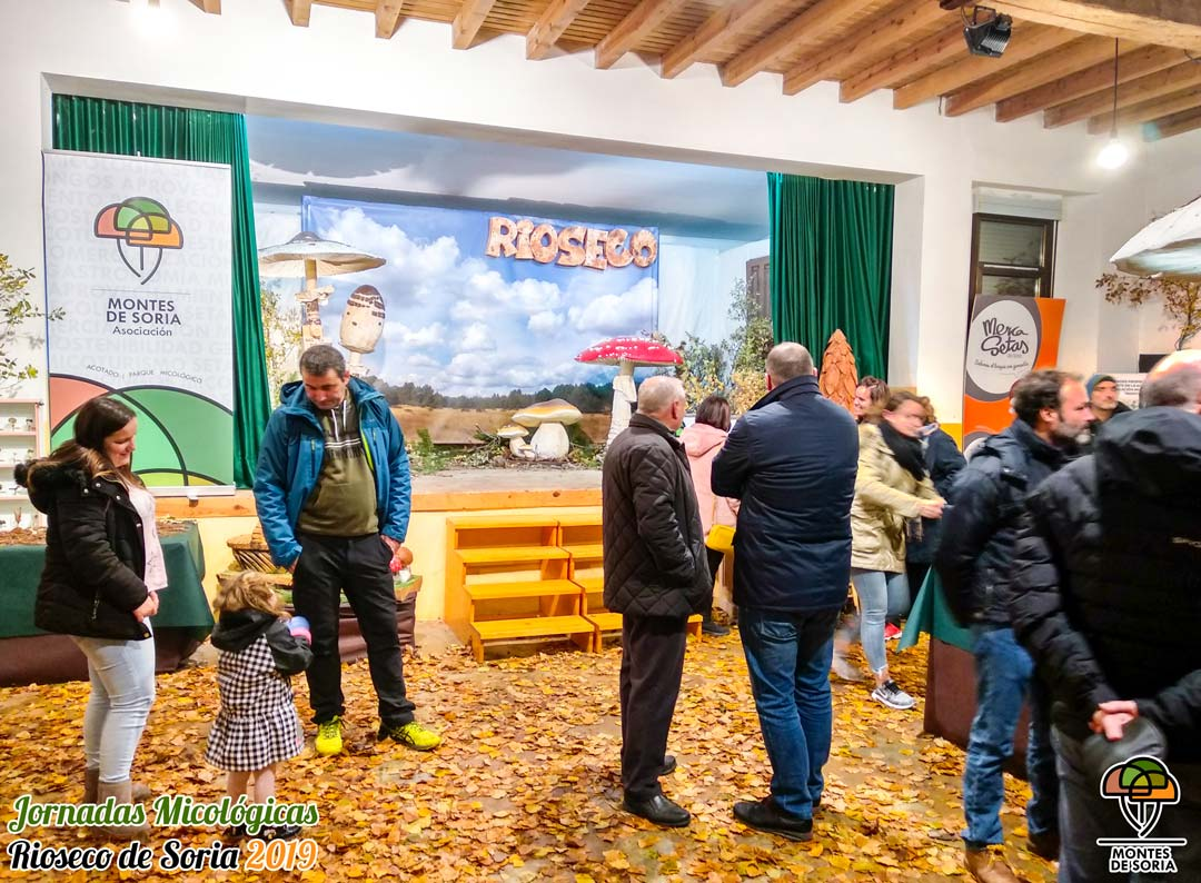 Jornadas Micológicas Rioseco de Soria 2019 6