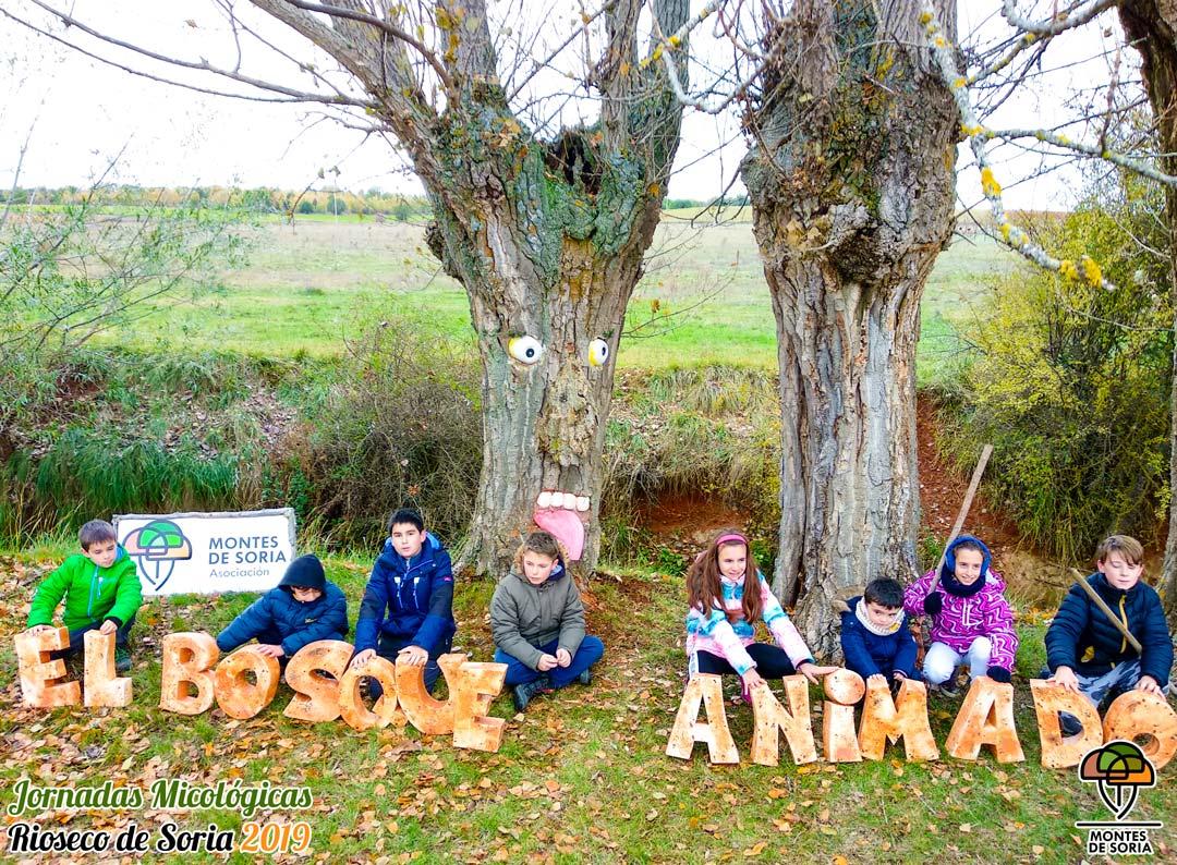 Jornadas Micológicas Rioseco de Soria 2019 Bosque animado
