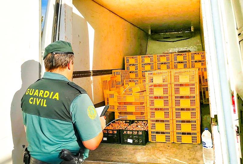 Gestión de decomisos furgoneta