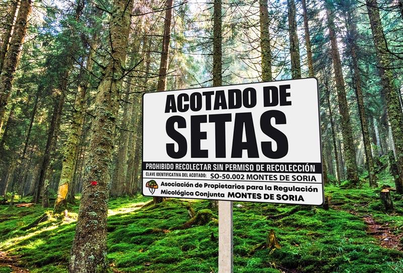 Señalización y limpieza de los montes