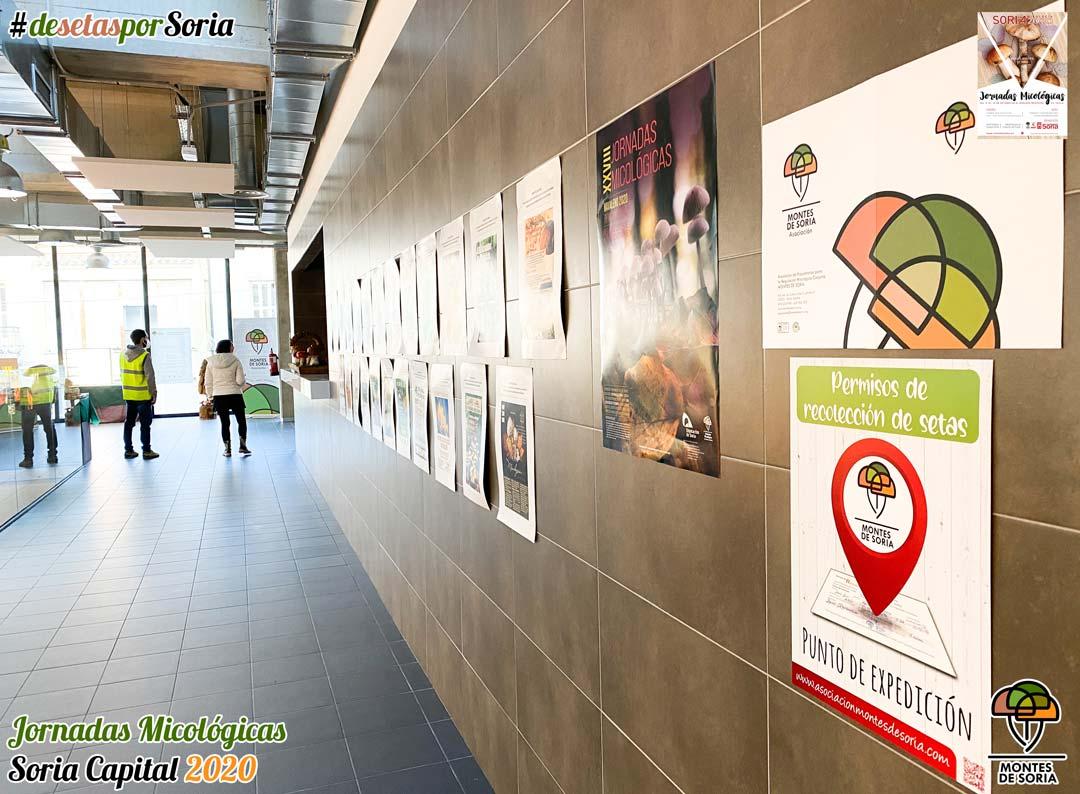 Jornadas Micológicas Soria 2020 carteles