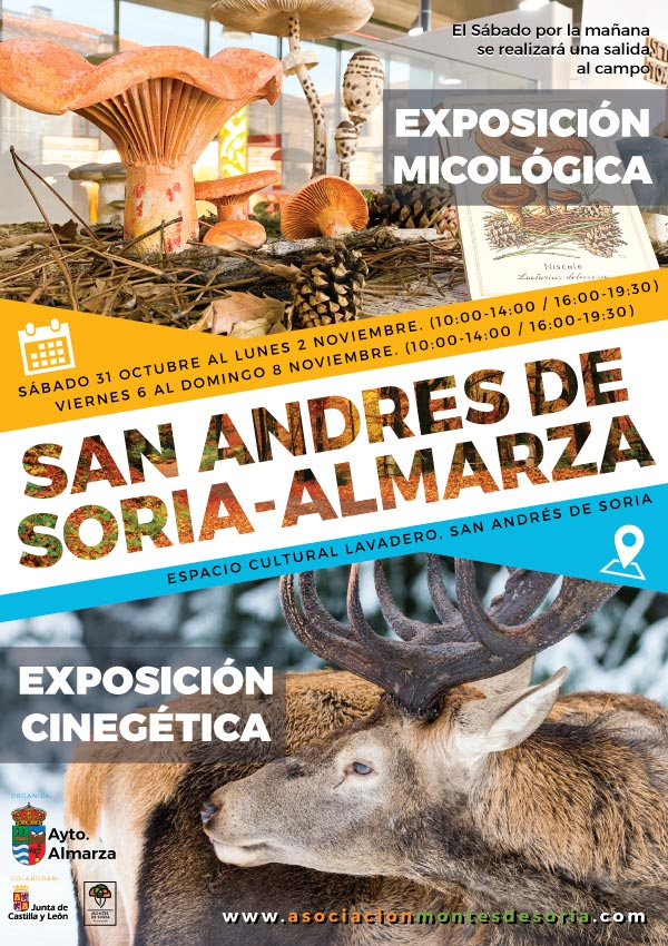Jornadas Micológicas Almarza 2020