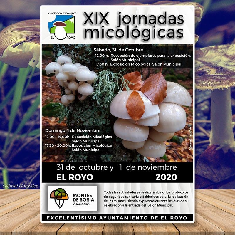 Jornadas Micológicas El Royo 2020 Portada