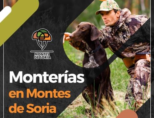 Monterías en Montes de Soria