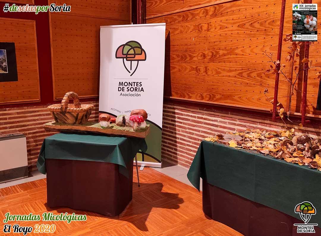 Jornadas Micológicas El Royo 2020 cesta setas