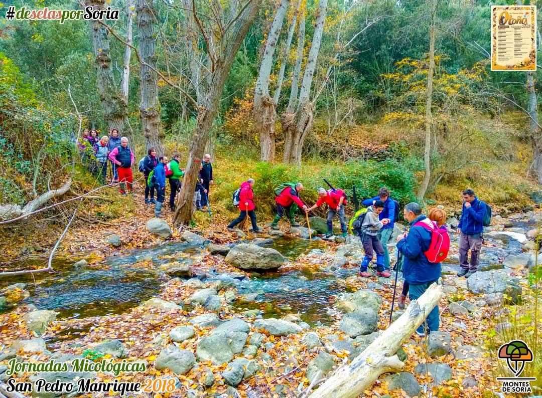 Jornadas Micológicas San Pedro Manrique 2018 río