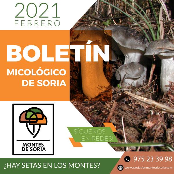 Primeros marzuelos en Soria 2021