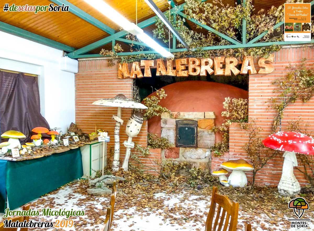 Jornadas Micológicas Matalebreras 2019 photocall