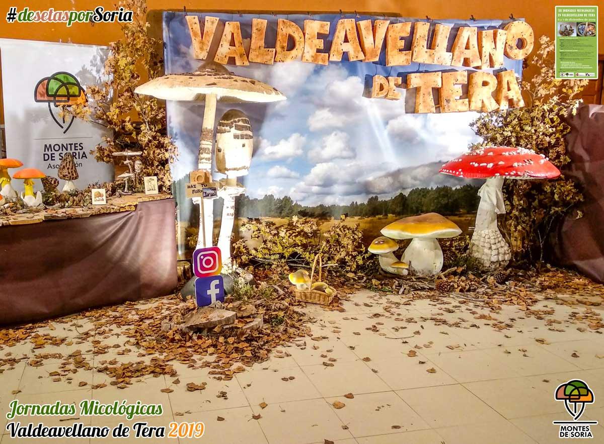 Jornadas Micológicas Valdeavellano de Tera 2019 photocall