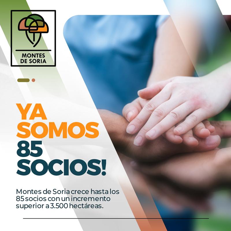 Montes de Soria crece hasta los 85 socios portada