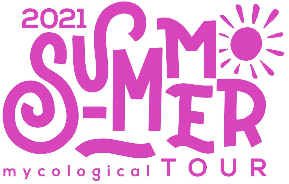 De setas por Soria Summer Tour 2021 logo