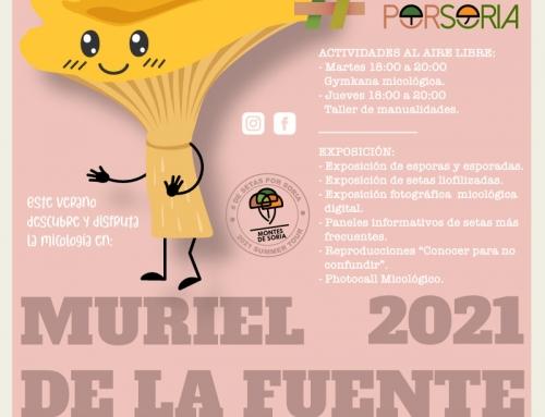 De setas por Muriel de la Fuente 2021