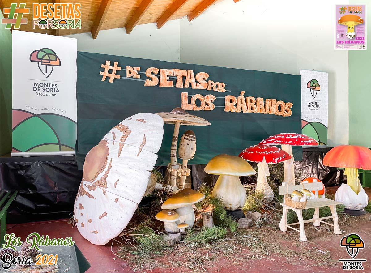 De setas por Los Rábanos photocall izquierda