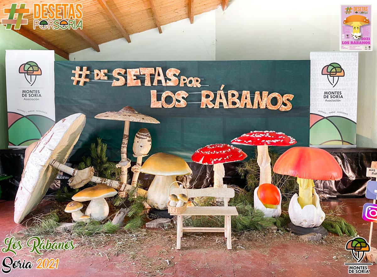 De setas por Los Rábanos photocall