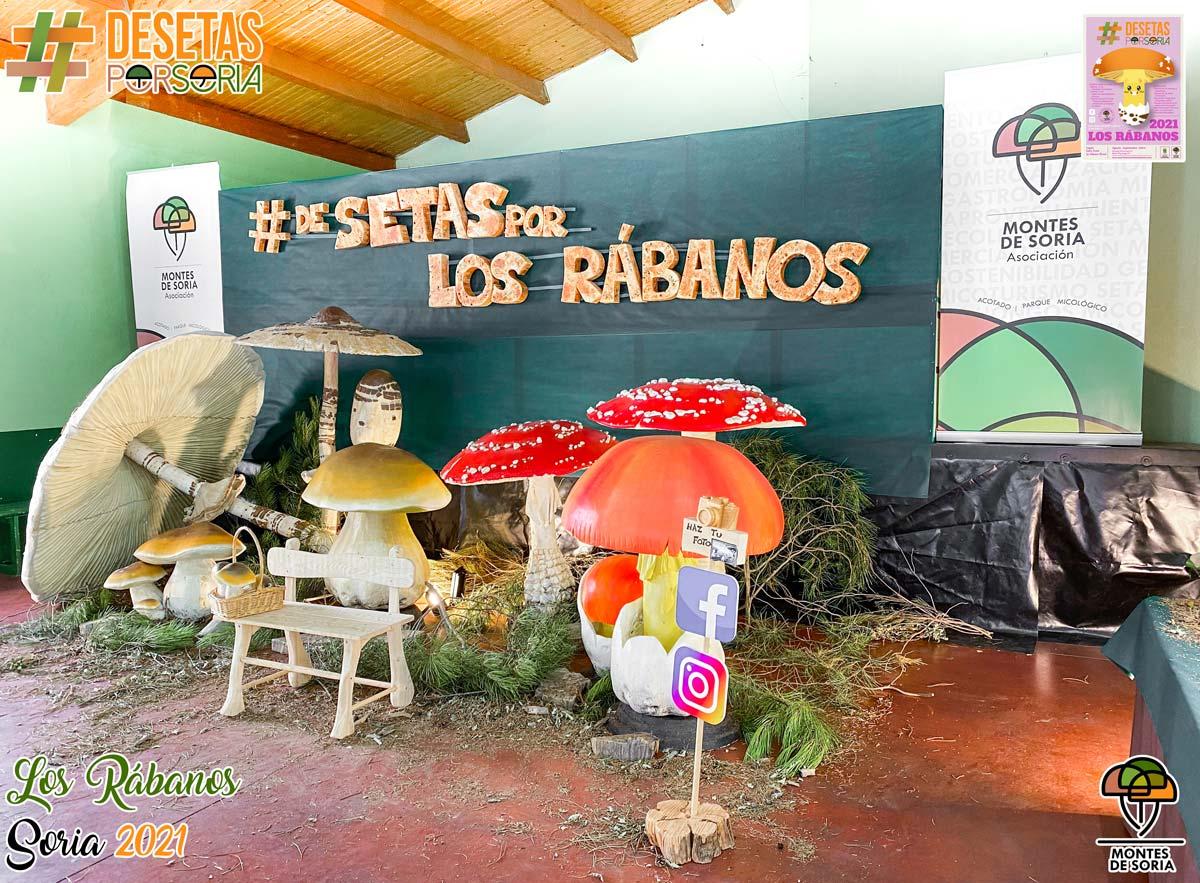De setas por Los Rábanos photocall derecha