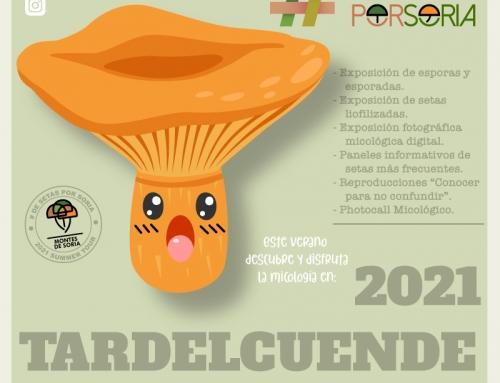 De setas por Tardelcuende 2021