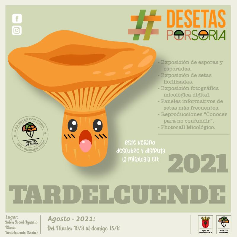 De setas por Tardelcuende 2021 portada