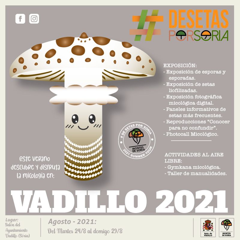 De setas por Vadillo 2021 portada