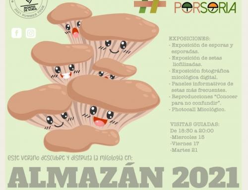 De setas por Almazán 2021