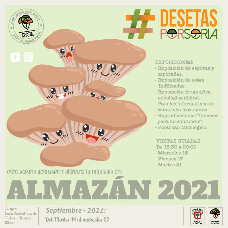 De setas por Almazán 2021 portada