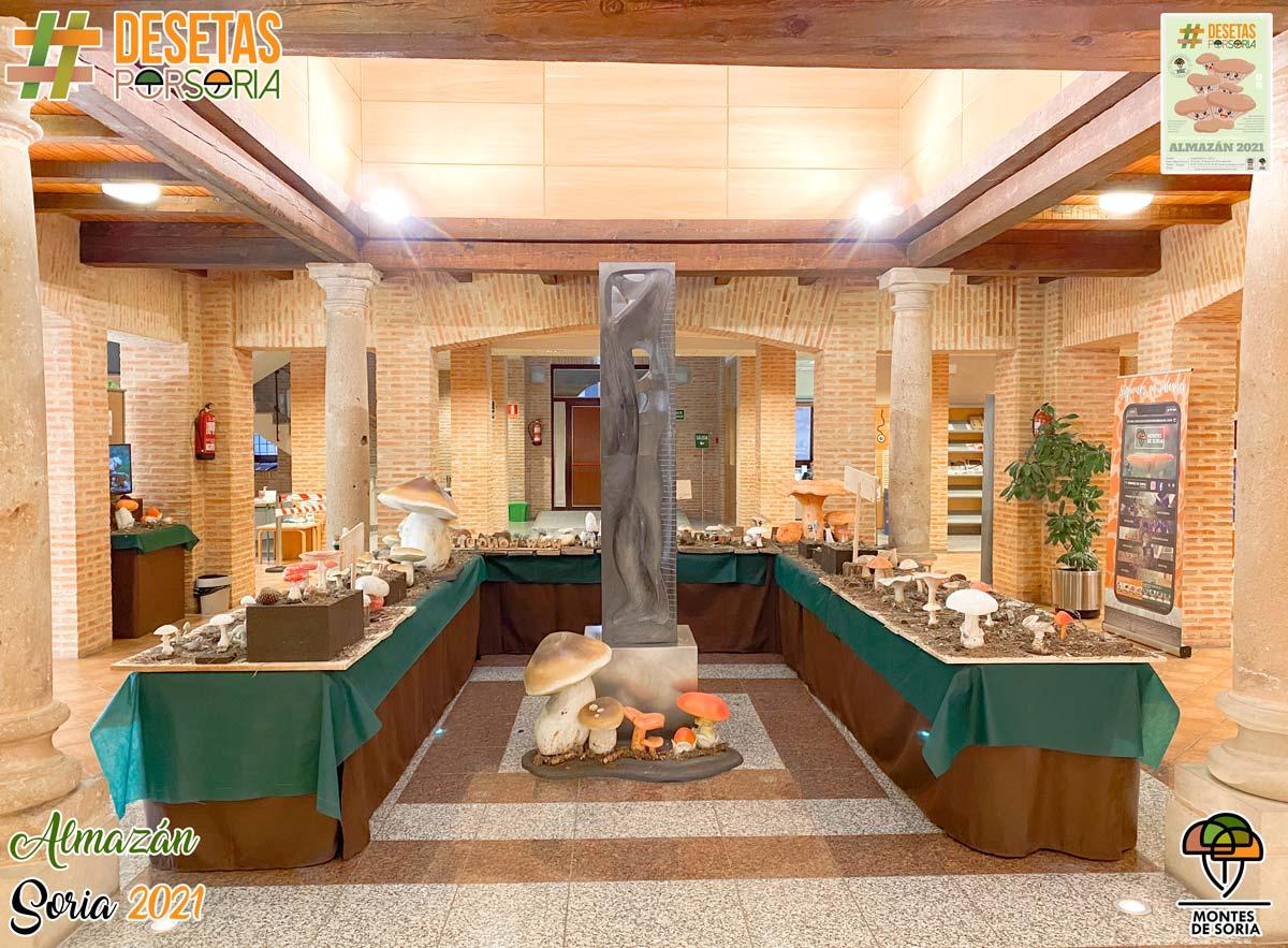 De setas por Almazán 2021 exposición