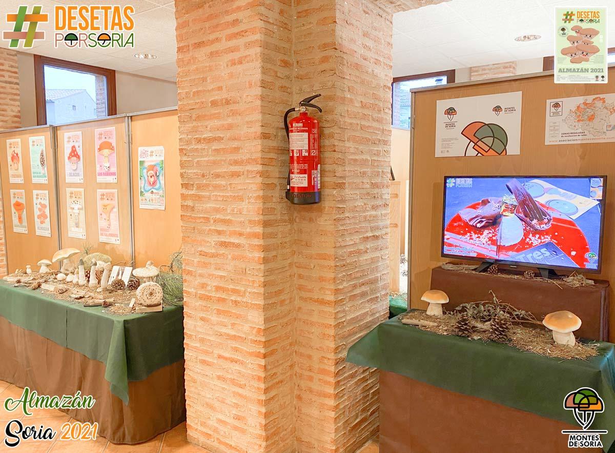 De setas por Almazán 2021 jornadas micológicas