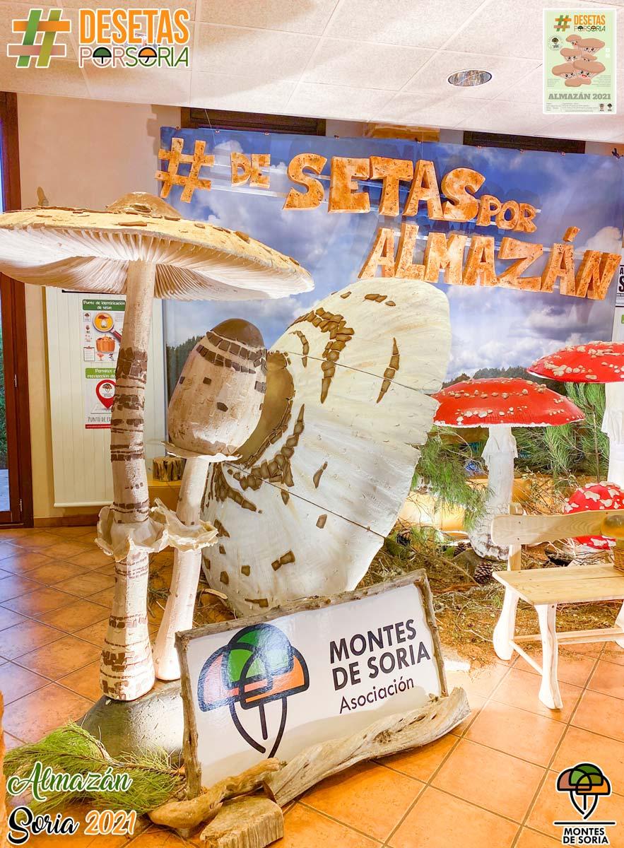 De setas por Almazán 2021 parasol photocall