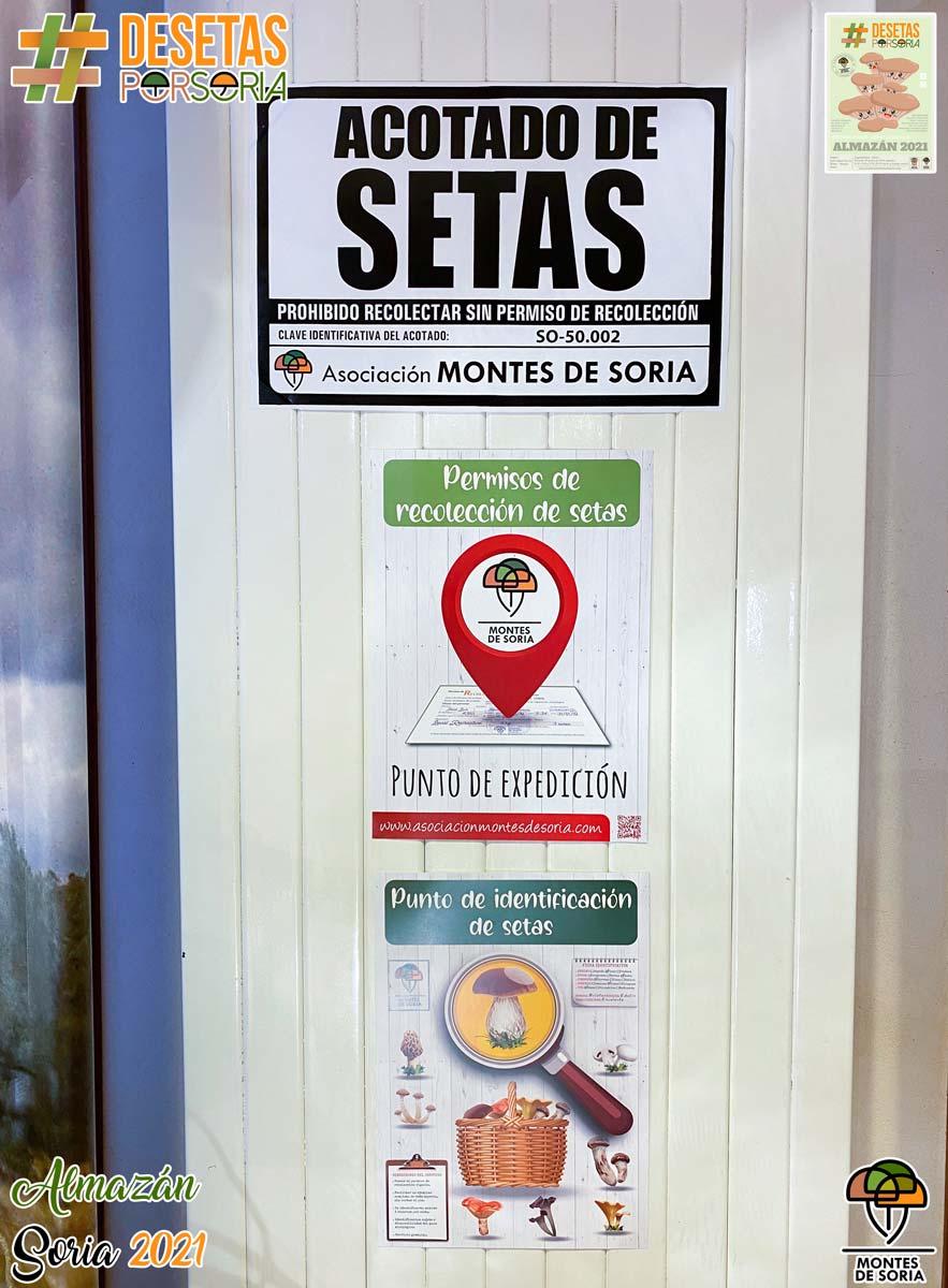 De setas por Almazán 2021 carteles informativos