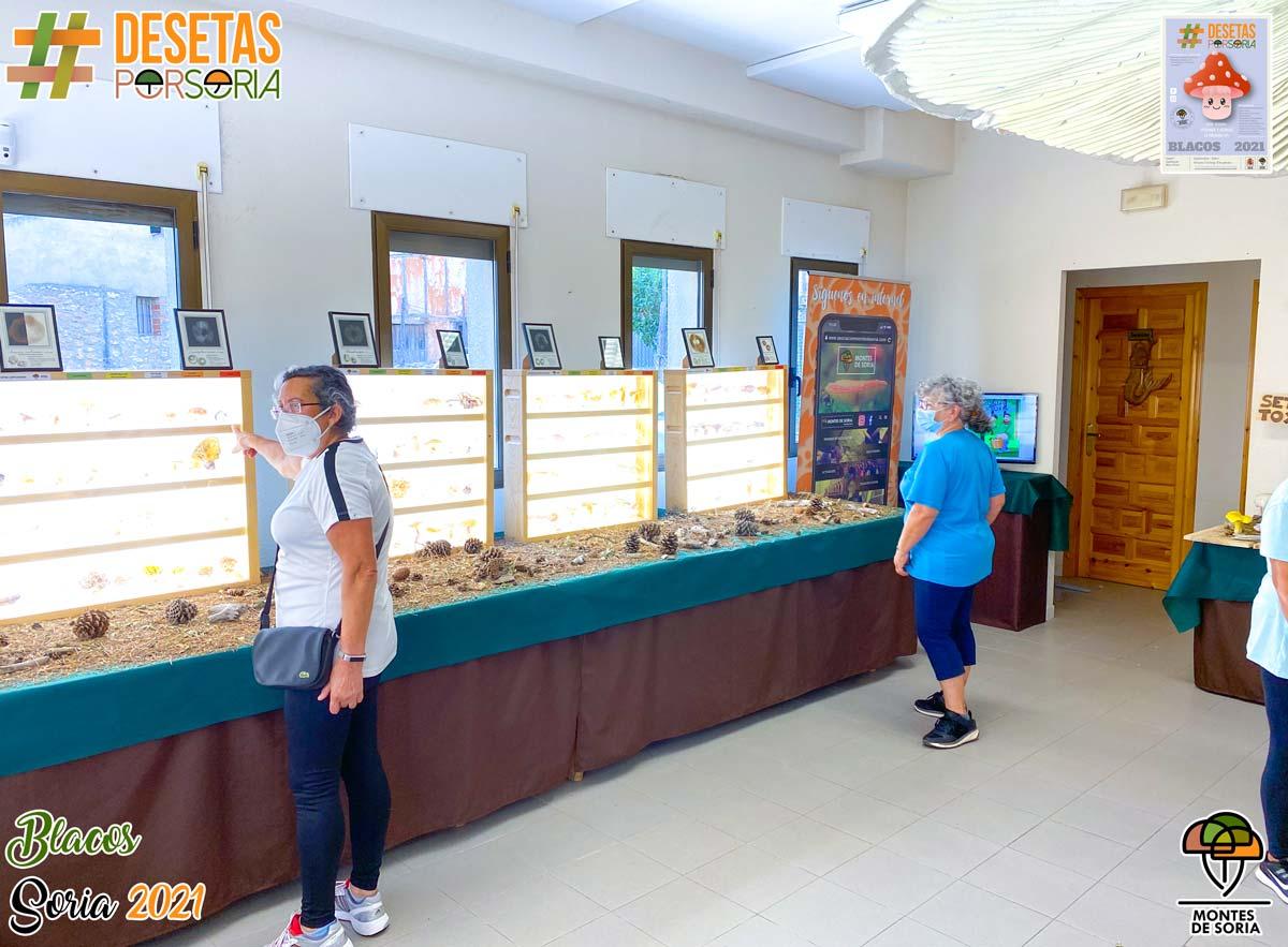 De setas por Blacos 2021 visitantes liofilizadas