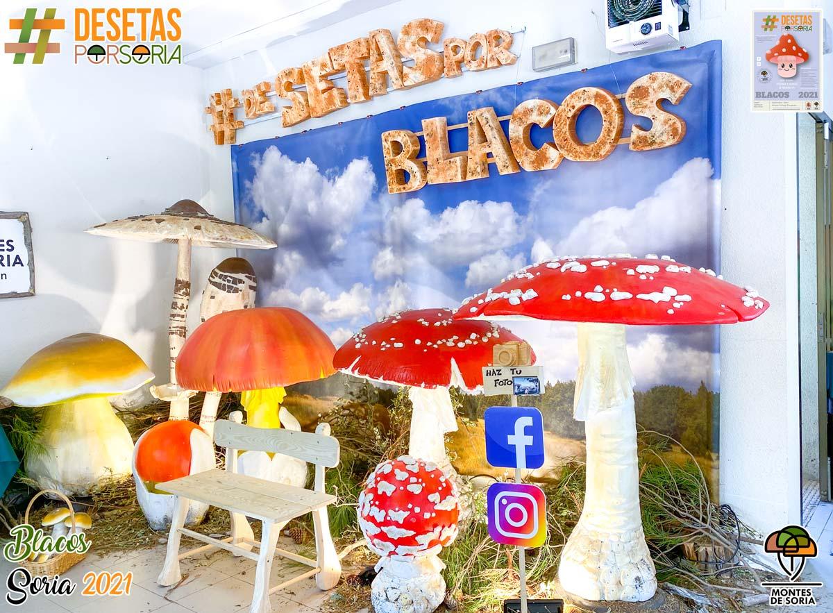 De setas por Blacos 2021 photocall