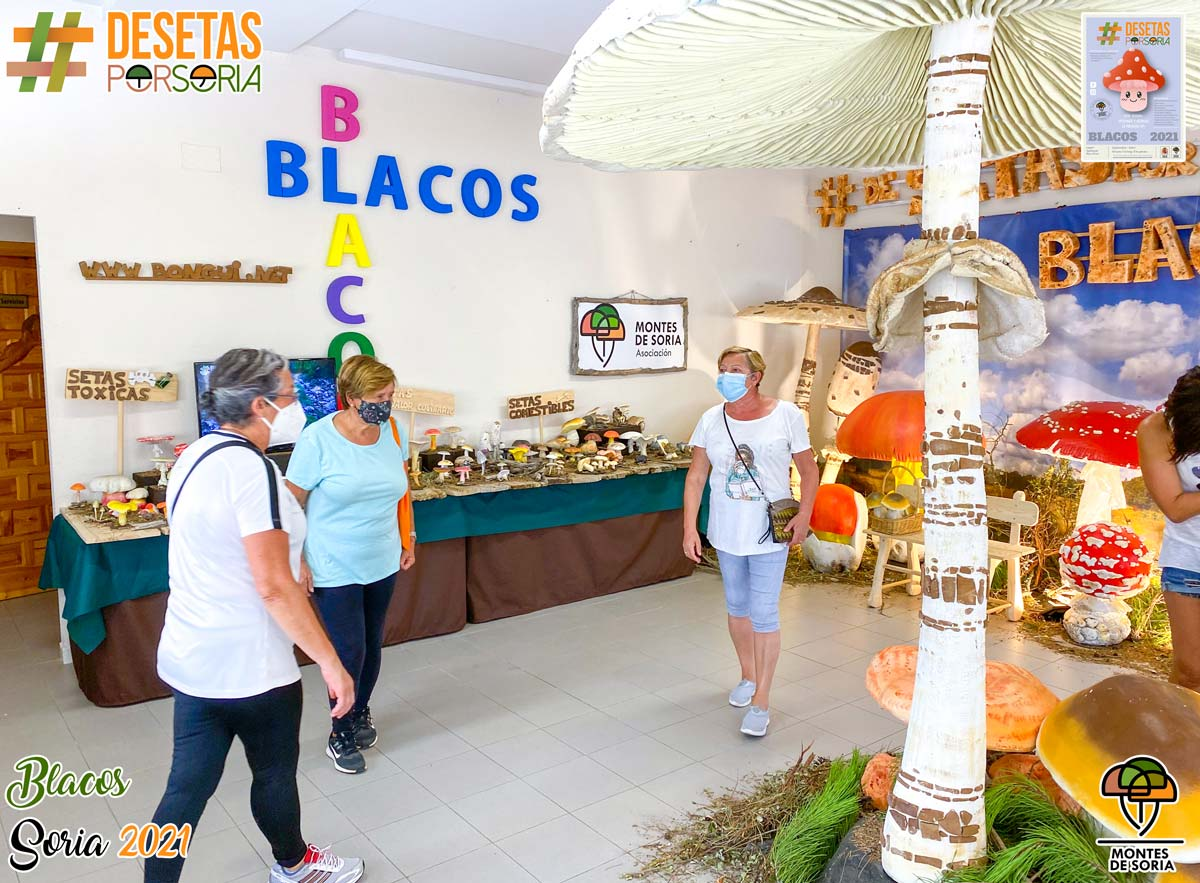 De setas por Blacos 2021 visita exposición