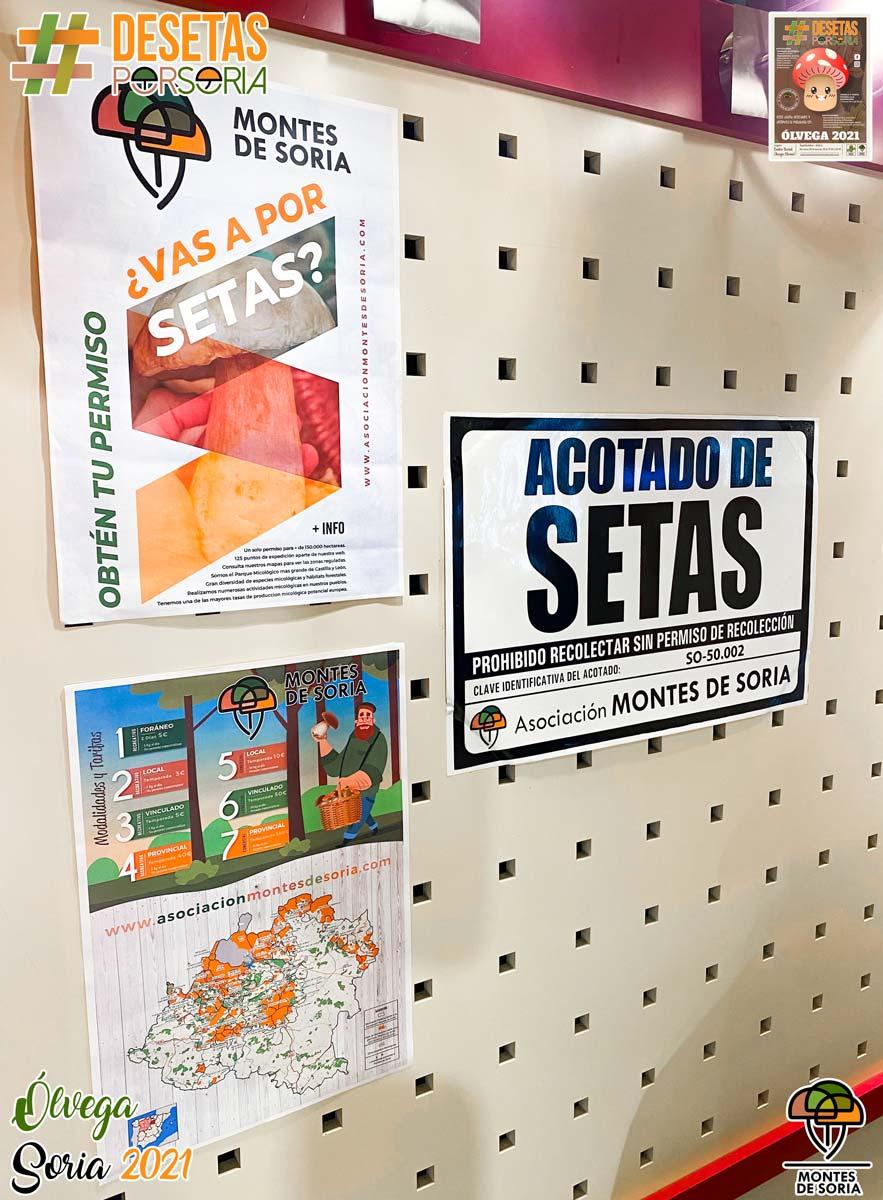 De setas por Soria - Ólvega 2021 carteles