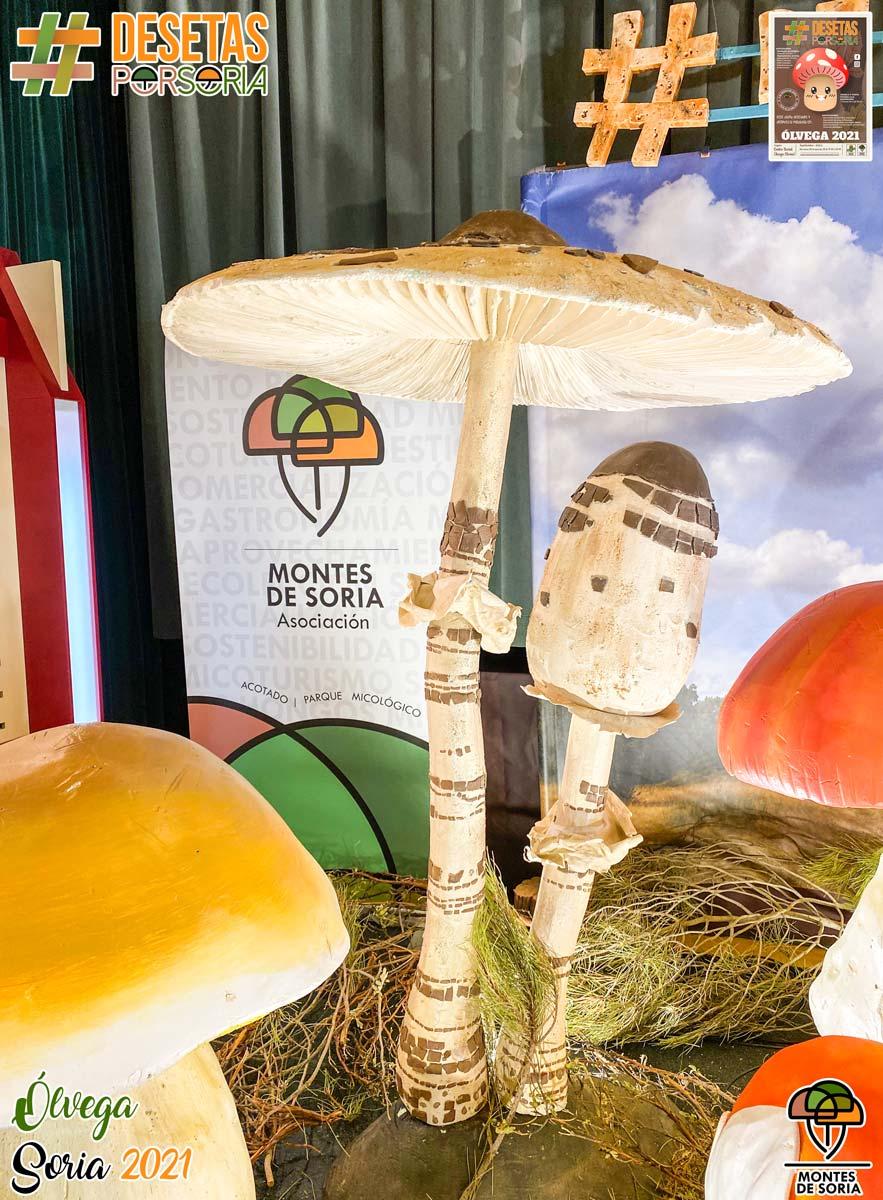 De setas por Soria - Ólvega 2021 photocall parasol